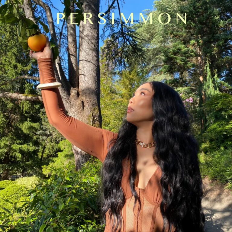 Persimmon Cover